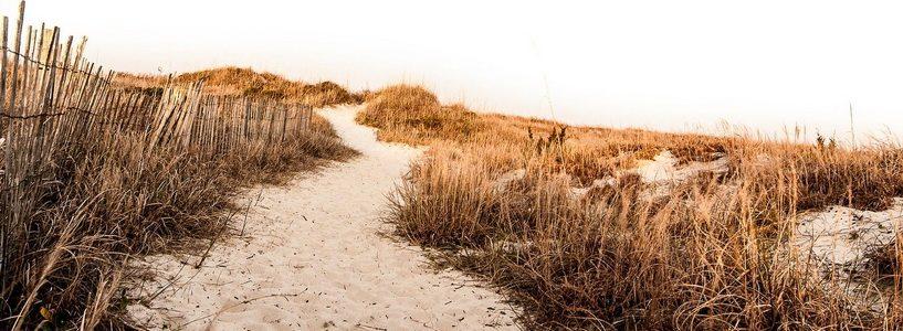 Chemin sur du sable